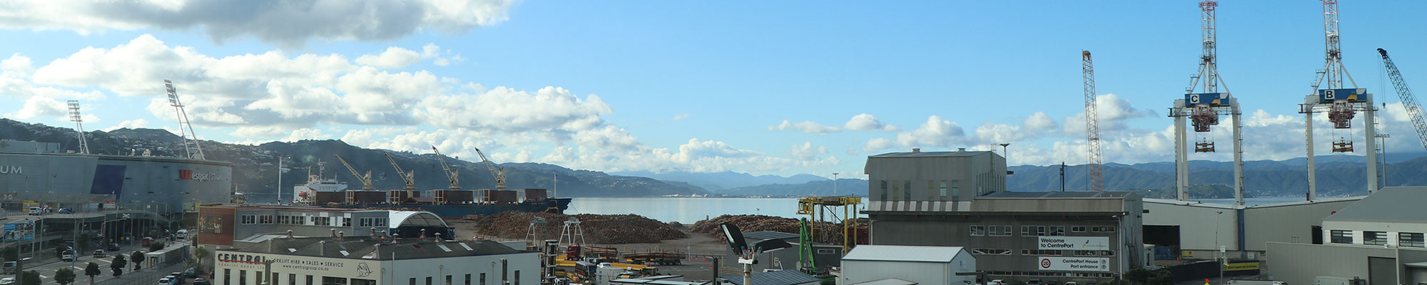 Wellington Port with logs for export