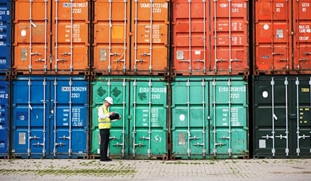 Customs officer reviewing shipping containers